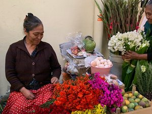 7 Day Women's Ultimate Culinary and Cultural Adventure in Oaxaca