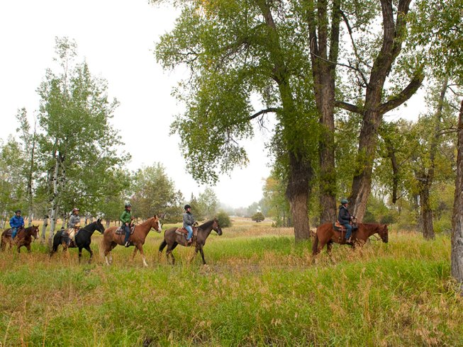 4 Days Cowgirl Yoga Retreat in Montana, USA