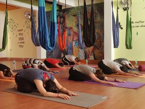 12 Days 100 Hours of Aerial and Yin Yoga Teacher Training in Rishikesh, India