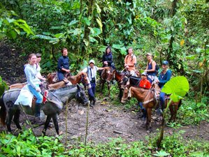 3 Day Horse Riding Holiday in Machalilla Park