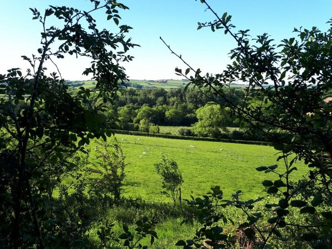 3 Days Wonderful Early Summer Meditation and Yoga Retreat Devon, UK
