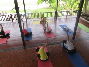10 Days Health, Meditation, and Yoga Holiday in Koh Samui, Thailand