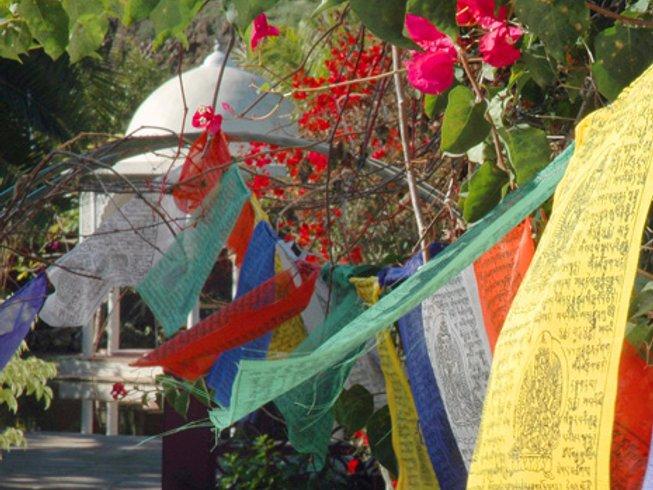 8 Days Loving Connections Portugal Yoga Retreat & Detox