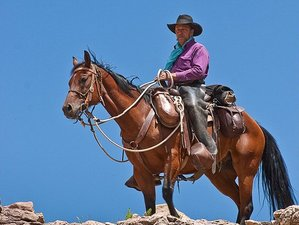 5 Day Pack Trip Horseback Riding Holiday in The San Juan Mountains Area, Colorado