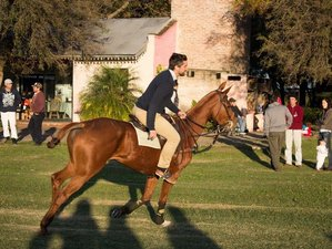 5 Day Exciting Polo and Horse Riding Escapade in Zelaya, Buenos Aires