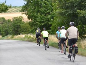 4 Days Taste of South Bohemia Cycling Holiday in Czech Republic