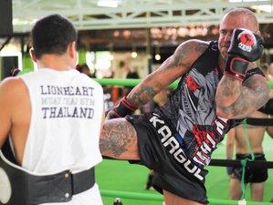 7 Tage Intensives Muay Thai Camp im Tropischen Paradies Koh Samui, Thailand