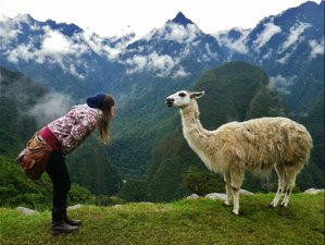 25 días, 200 horas profesorado de yoga en Cuzco, Perú