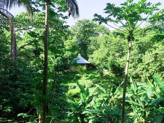 7 Days Detox, Meditation, and Yoga Retreat in Costa Rica