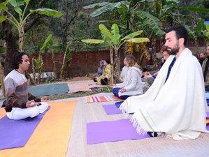 7 Days Hatha Yoga Retreat in Rishikesh, India