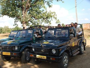 6 Days Safari Tour in Madhya Pradesh, India