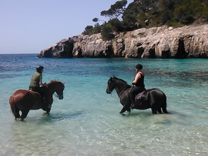 5 Day Island Trails Horse Riding Holiday in Menorca