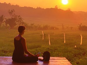 4 Day Private Yoga and Culture Holiday in Yogyakarta, Java