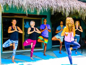 7 Tage Leckerer und Gesunder, Transformierender Yoga Retreat in Sayulita, Mexiko
