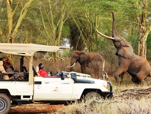 4 Days Fascinating Luxury Safari in Kenya