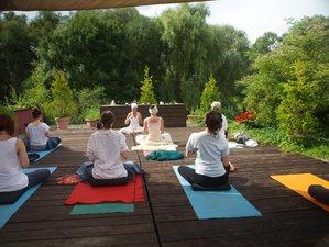 3 Tage ab ins Grüne Sommer Yoga Retreat in Stolzenhagen, Brandenburg