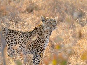 7 Days Desert Safari in Maun, Botswana