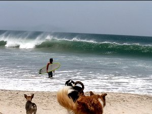 7 Days Advanced Surf Camp in Tamarindo, Costa Rica