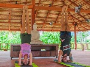 29 Days Muay Thai Training with Yoga Retreat in Phuket, Thailand