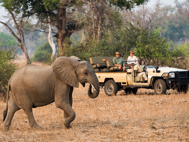 13 Days Game Park Safari in Zambia and Malawi