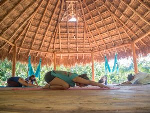 7 Day Replenishing Yoga Holiday in Cozumel Island, Quintana Roo