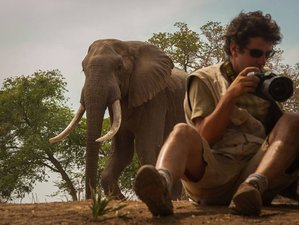 8 Days Luxury Photography Safari in Kenya