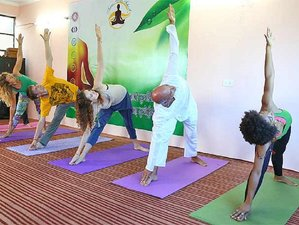 31 Days 200-hrs Ayurveda Yoga Teacher Training Course in Rishikesh, India