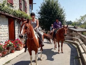 8 Day Fantastic Western Riding Holiday in Emilia-Romagna, Italy