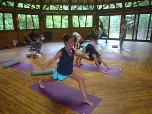 8 Days Rainforest Ecological Healing Asthanga Yoga Retreat in Brazil
