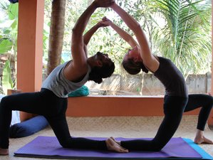 8 Days Vinyasa Yoga Retreat in Goa, India