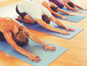 7 jours en stage de yoga Friendly Environment au Mexique