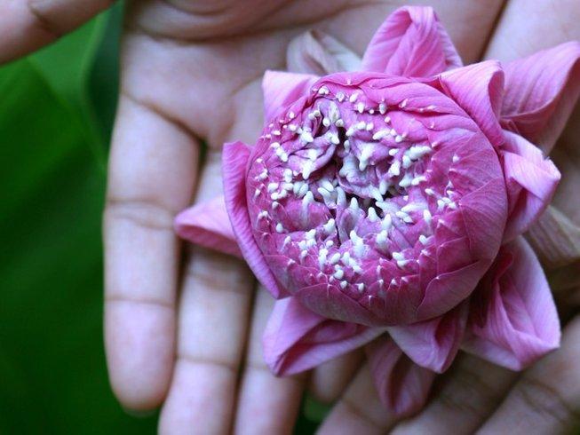 8 Days Family Christmas and Yoga Retreat Thailand
