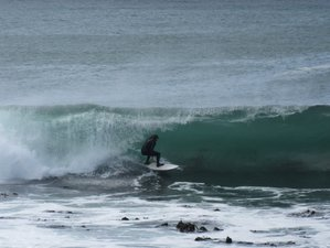 7 Day Fun Surf Camp and Safari in Muizenberg, Cape Town