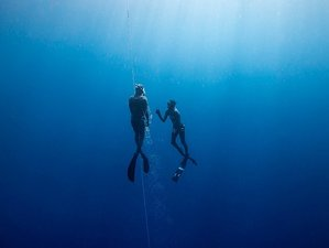 7 Days Freediving and Yoga Retreat in Tenerife, Spain