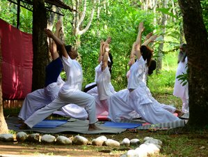 30 Days 200-Hour RYS Yoga Teacher Training Kerala, India