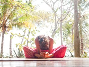8 Day Inner Peace Meditation and Yoga Retreat in Tenerife, Canary Islands