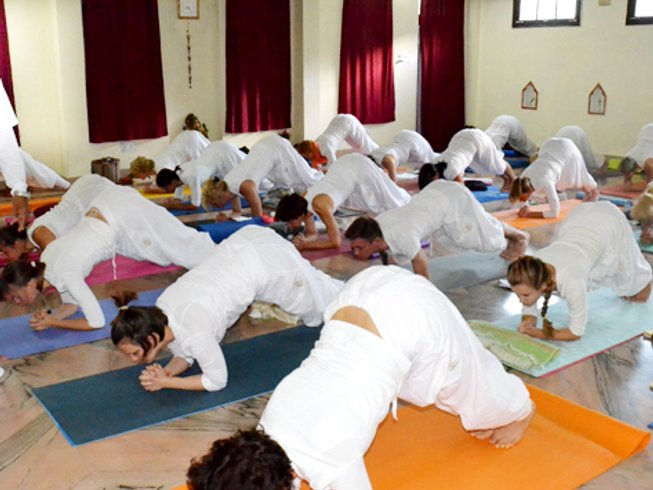 43 Days 300-Hour Hatha Yoga Teacher Training in India