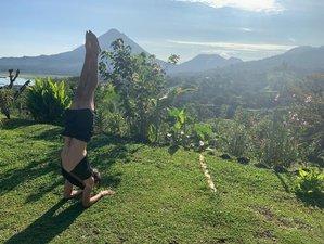 21 Day Rainforest Detox Wellness and Yoga Retreat in El Castillo, Alajuela