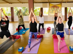 23 Day 200-Hour Hatha and Ashtanga Vinyasa Flow Yoga Teacher Training in Goa