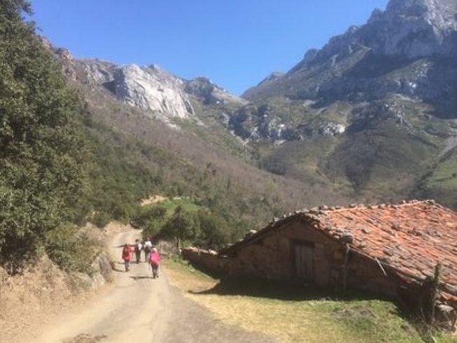 8 días retiro de meditación en silencio y caminata por el Camino de Santiago, España