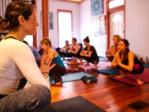 4 Day Wellness Yoga Holiday in Alachua, Florida