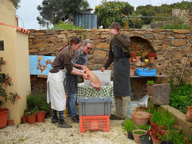5 Days Butchery & Meat Cooking Holidays in Portugal