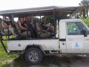 8 Days Overlanding Safari Tour in Botswana