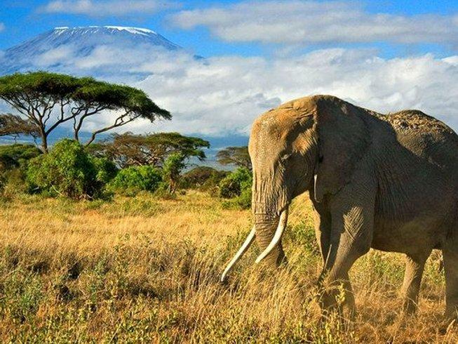 8 Days Masai Mara Group Safari in Kenya