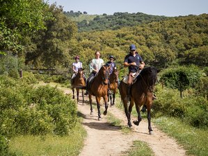 4 Days Trail Horse Riding Holiday and Ranch Vacation in Sierra de Grazalema Natural Park, Spain