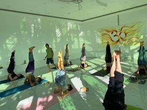 22 días, 200 horas de profesorado de yoga de estilo múltiple en el país del Himalaya, Nepal