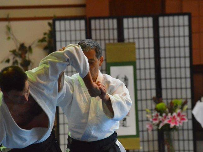 4 Days Summer Aikido Retreat in California, USA