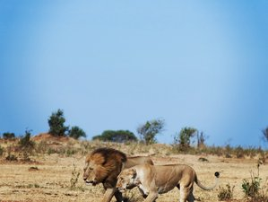 8 Days Magical Tanzania Safari