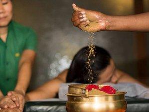 11 Days Panchakarma Detox Retreat in Maharashtra, India