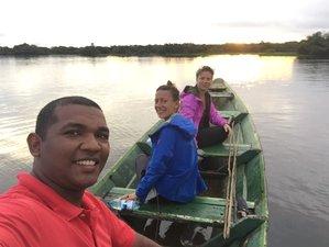 6 Day Amazing Jungle Wildlife Tour in Brazil